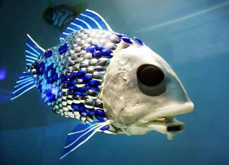 stuff_robotfish